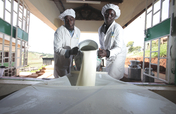 EADD II - East Africa Dairy Development Phase II