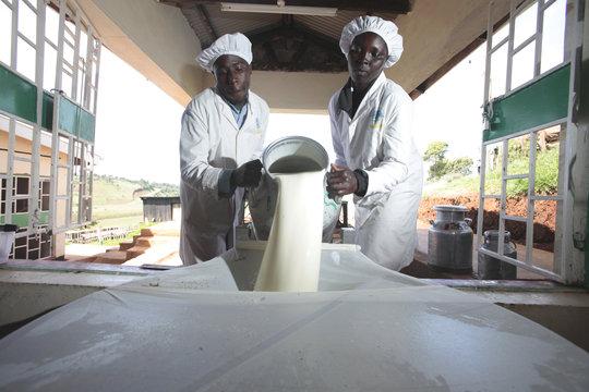 EADD II - East Africa Dairy Development Phase II