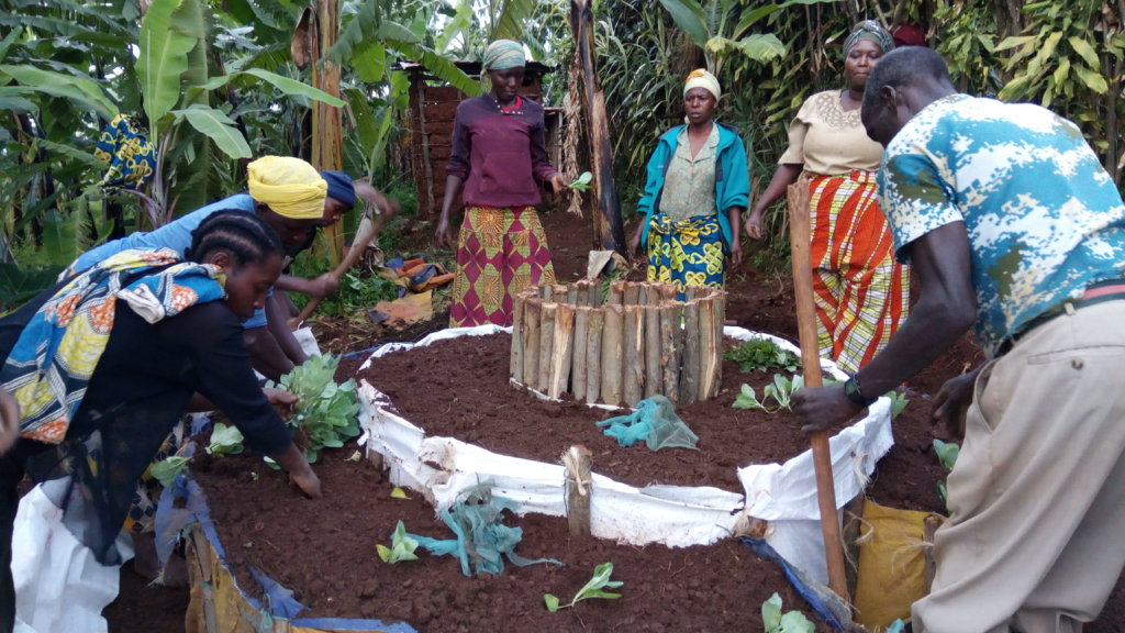 Creating a nutritious kitchen garden
