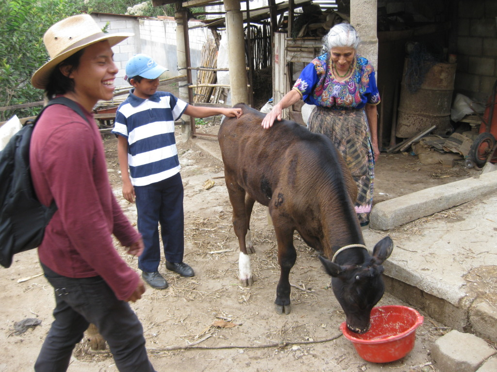 Plan Moo helps the elderly with milk