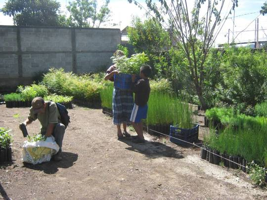 The nursery where we will be growing the plants
