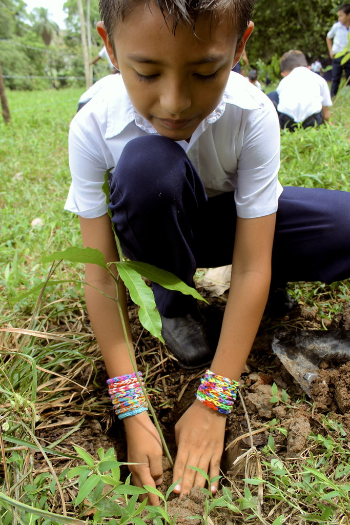 Engaging Minds: Planting Trees, Inspiring Youth