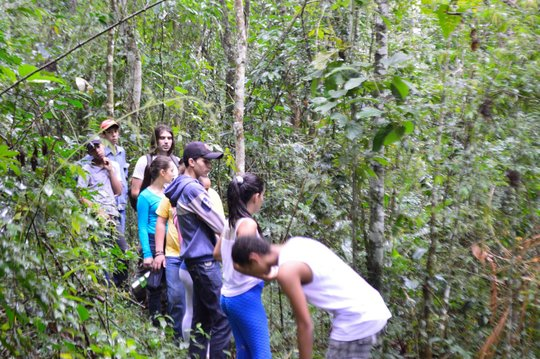 Young Eco-Leaders exploring the Rainforest!