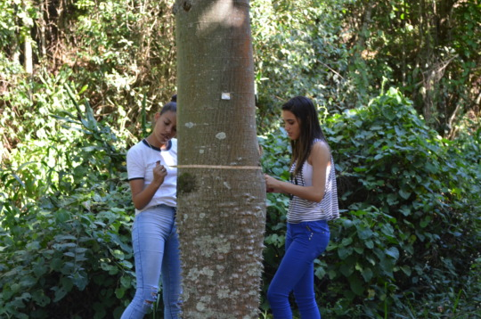 Young EcoLeaders Monitoring the Forest