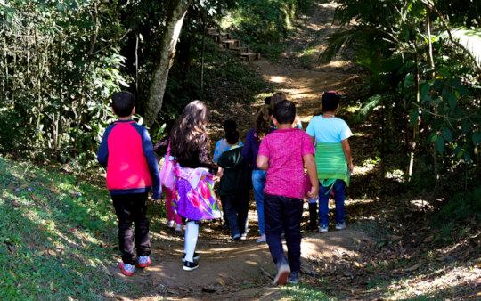 Walk through the Medicinal Plants Trail