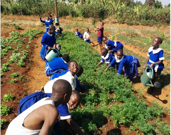 The Bamendankwe students and their garden