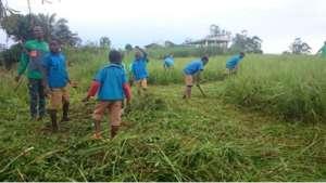 Students preparing their garden