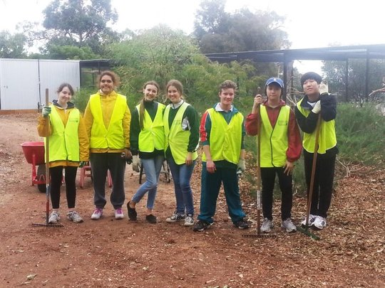 Our Student Volunteers