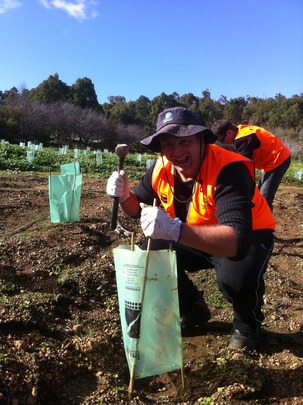 Volunteers Planting Native Seedlings