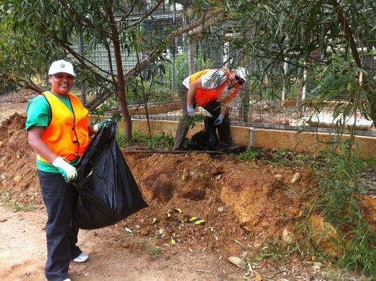 Volunteers Removing Weeds