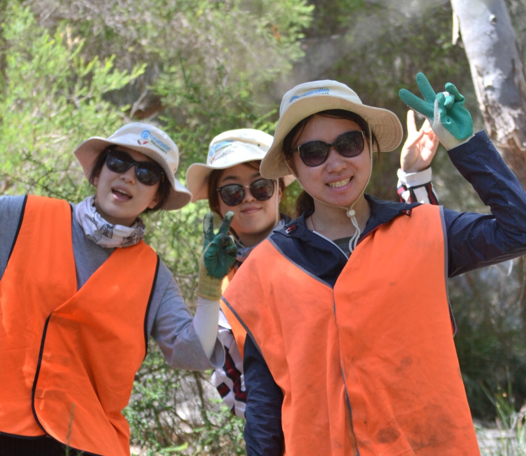 Volunteers at Bannister Creek