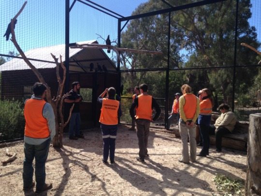 Volunteers in the interactive enclosure
