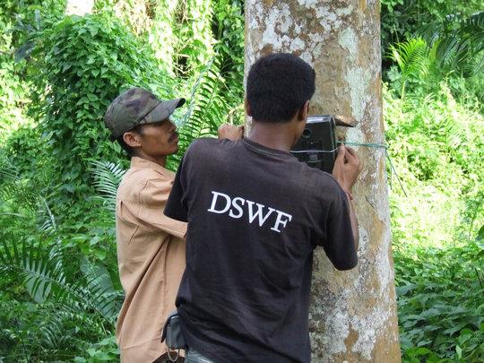 Installing the camera traps in Kaziranga