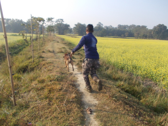On the trail of poachers