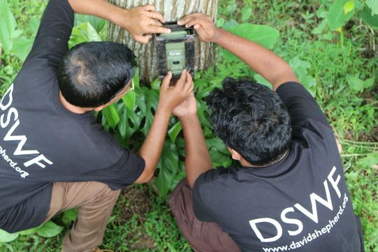 Setting vital camera traps