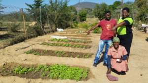 Seed beds almost ready for transplanting