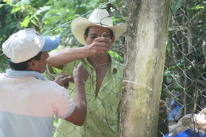 Community members help build the fence