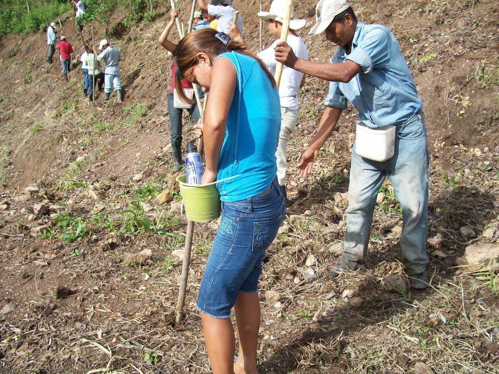 Planting trees in Honduras
