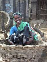 Rahibai - goats through a loan from her  Self Help