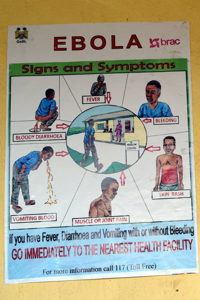 Stop Ebola: What you can do