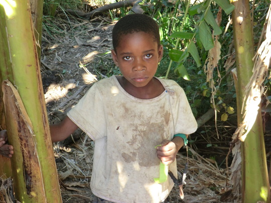 Malaria protection is vital for young children