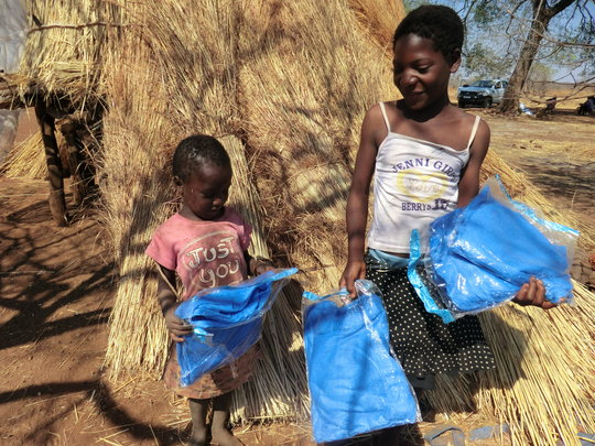 Mosquito Nets Provide Protection Against Malaria