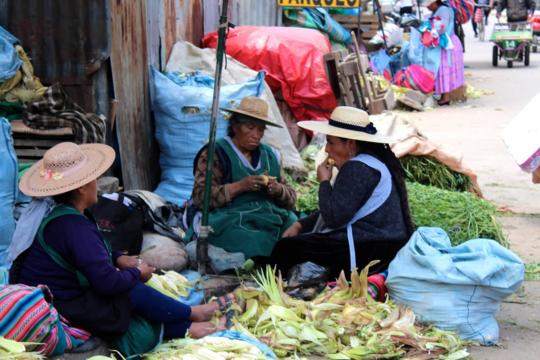 Vibrant colors of the Bolivian market