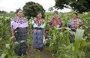 Supporting 200 Guatemalan Businesswomen