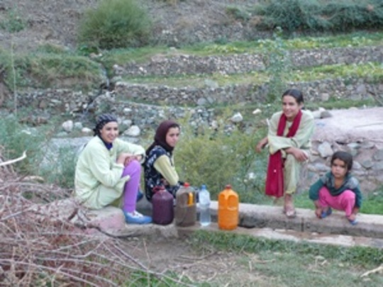 Berber women and children will read and write.
