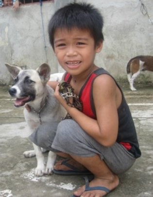 RESCUE DOGS in FLOOD AREAS - SAVE CHILDREN'S LIVES