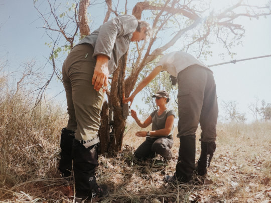 Earthwatch volunteers install a camera trap