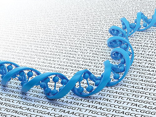 exome sequencing project With exome sequencing becoming a tool for mutation detection in routine   genome projectvariant callbioinformatics pipelineexome datareference  cluster.
