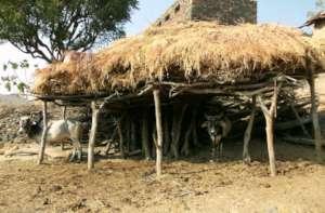 Tribal family's standard of living
