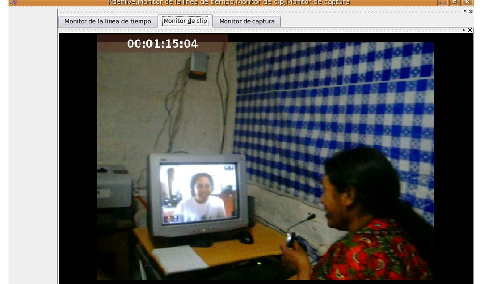 Woman using Skype to videoconference