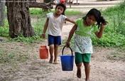 Feed 3,000 Poor Filipino Kids w/ Fresh Vegetables