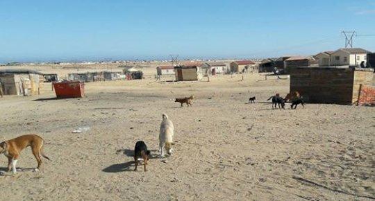 DRC, Swakopmund: the township where Nica lives