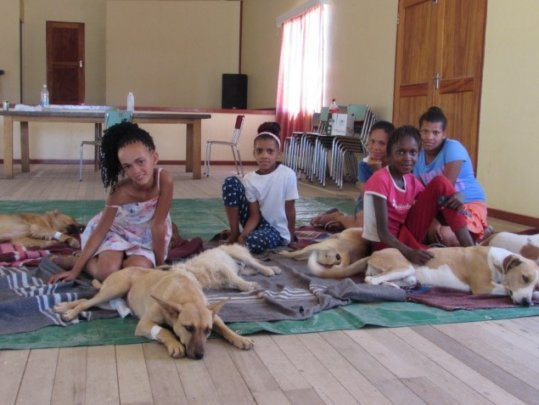 Children & their dogs during recovery