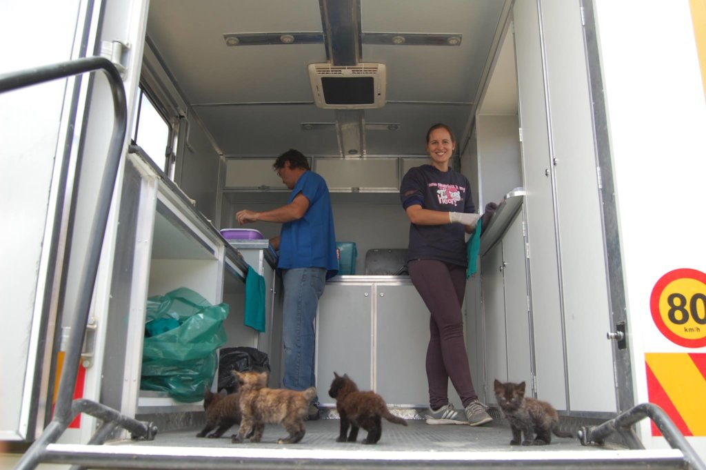 Support for Have A Heart-Mobile Spay/Neuter Clinic