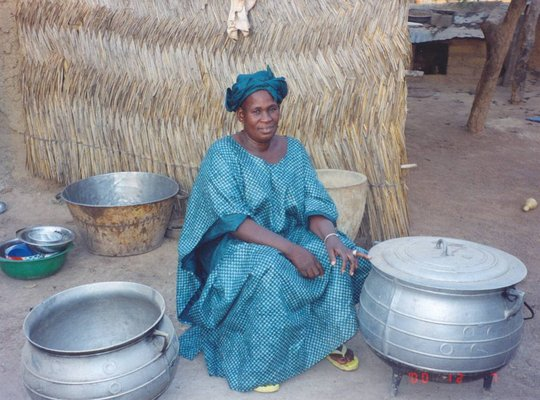 Help Malians recieve vaccinations & mosquito nets