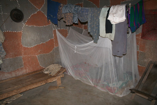 Bed for a family of four