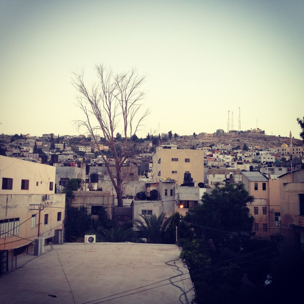 Jen Refugee Camp, view from The Freedom Theatre