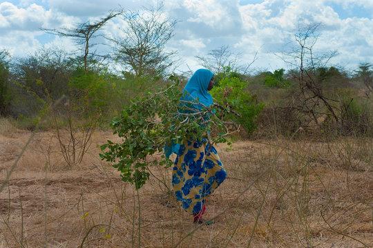 Bring Education to 270 Nomadic School Girls