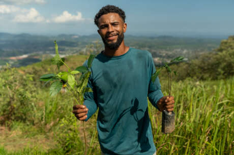 SINAL: Reforesting and Reconnecting with Nature