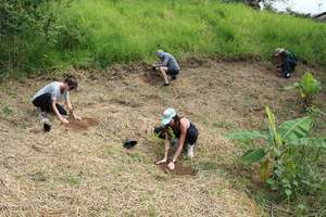 Planting trees , a source of life