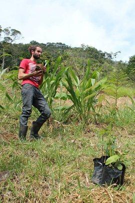 Ryan, a sinal volunteer planting a tree