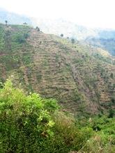 Degraded Land Targeted For Restoration