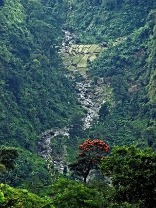 Kunir Gorge