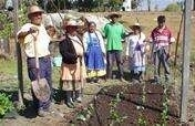 Grow Clean Food & Harvest Water in Rural Oaxaca