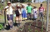 Grow Clean Food & Harvest Water in Rural Oaxaca
