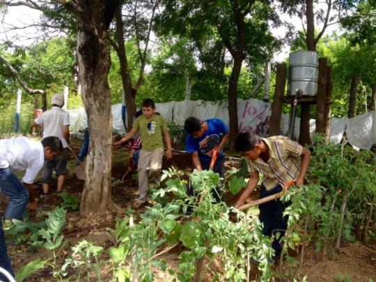 La Chilama boys cultivating their school garden